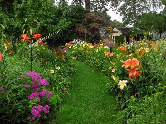 庭院花卉的碱害和酸害防治